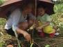 Tree Planting Activity at Nuvali
