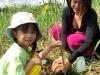 ccdc_alabang_tree_planting_at_nuvali_image_003