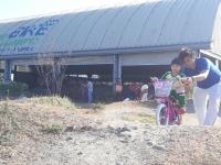 Junior Nursery 2 Fieldwork at The Bike Playground