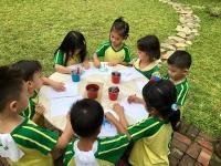 Kinder Fieldwork -  Calamansi Fruit Picking