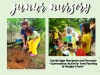 yfl-curriculum-planning-seeds-jr-nursery-act-image-04