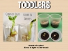 yfl-curriculum-planning-seeds-toddlers-act-image-09