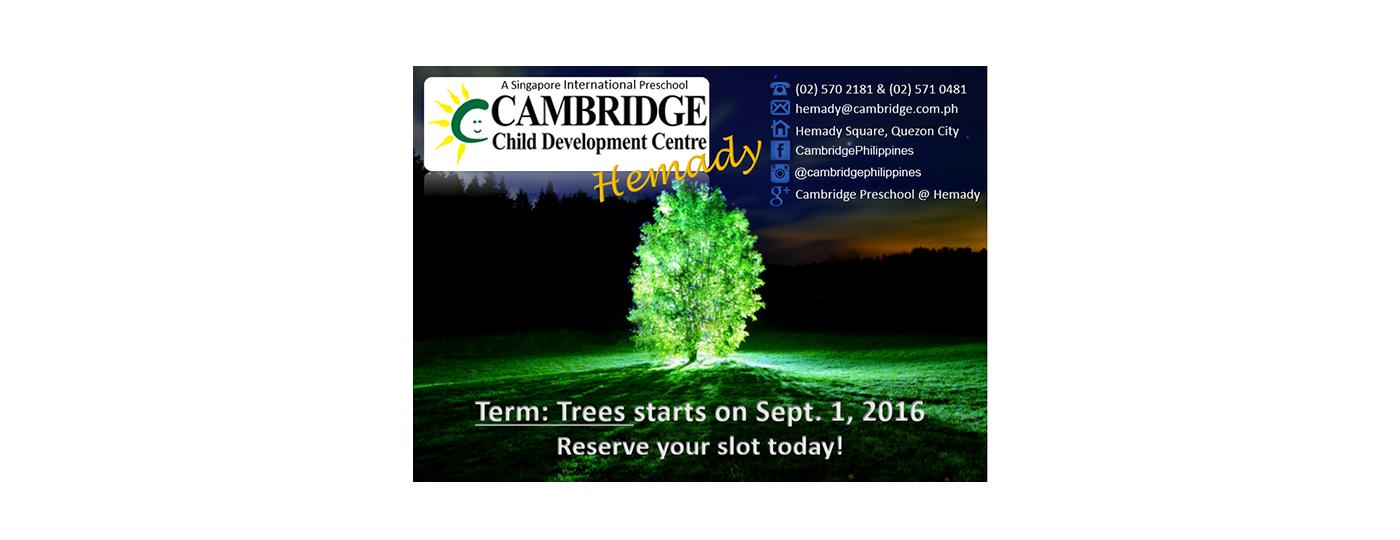 Hemady-Term-Trees-2