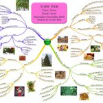 kinder-topic-web-about-trees