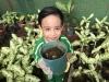 ccdc_alabang_fieldwork_atc_greenhouses_38