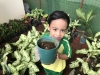 ccdc_alabang_fieldwork_atc_greenhouses_39