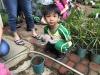 ccdc_alabang_fieldwork_atc_greenhouses_42