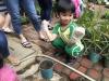 ccdc_alabang_fieldwork_atc_greenhouses_43