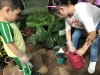 ccdc_alabang_fieldwork_atc_greenhouses_46