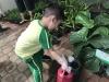 ccdc_alabang_fieldwork_atc_greenhouses_48
