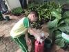 ccdc_alabang_fieldwork_atc_greenhouses_50