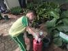 ccdc_alabang_fieldwork_atc_greenhouses_51