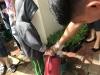 ccdc_alabang_fieldwork_atc_greenhouses_56