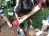 ccdc_alabang_fieldwork_atc_greenhouses_59