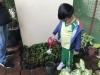 ccdc_alabang_fieldwork_atc_greenhouses_82