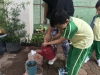 ccdc_alabang_fieldwork_atc_greenhouses_88