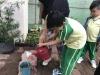 ccdc_alabang_fieldwork_atc_greenhouses_89