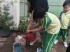 ccdc_alabang_fieldwork_atc_greenhouses_90