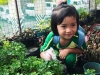 ccdc_alabang_fieldwork_atc_greenhouses_98