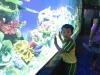 cambridge-preschool-alabang-ocean-park-trip-22