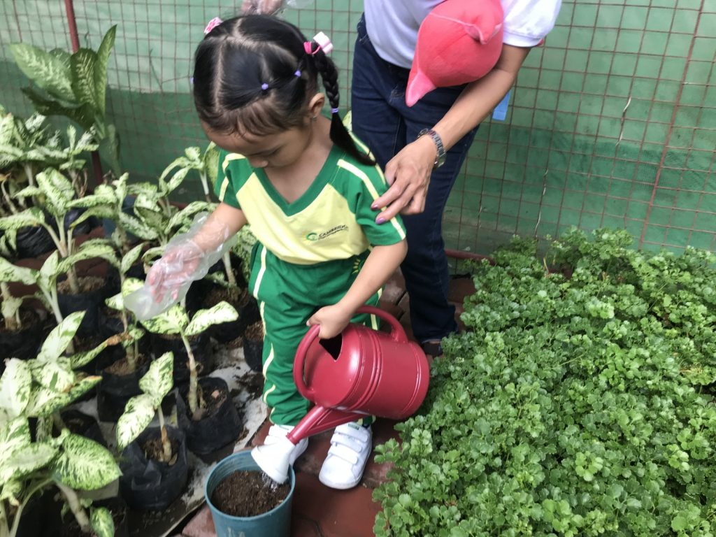 Gardening at ATC Greenhouses