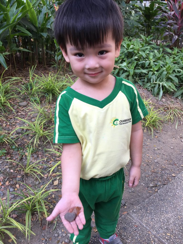 Nature Scavenger Hunt with the Toddlers 03