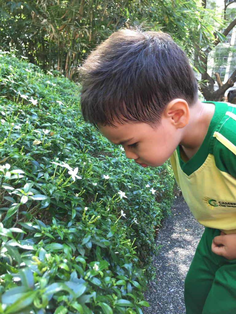 Nature Scavenger Hunt with the Toddlers 05