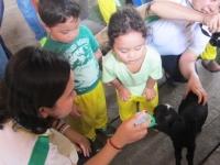 Term 2, Culminating, Toddler Class and Field Work, Nur-Kin Class (2014)